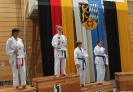 28. Int. Weinheim Pokal 2013